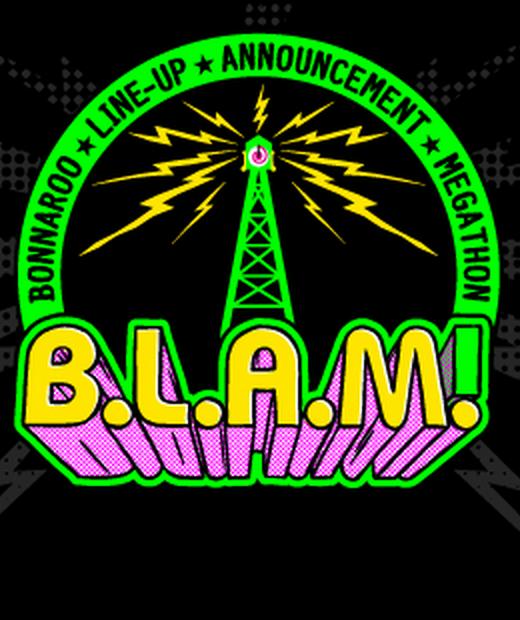 Bonnaroo Blam 2014