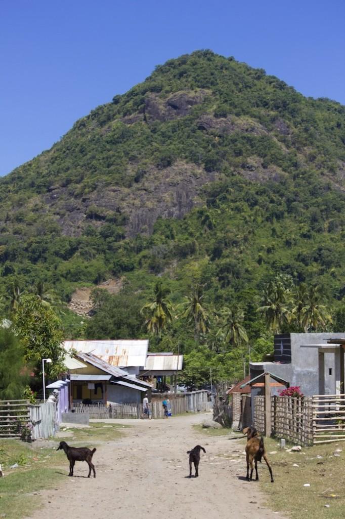 sumbawa village