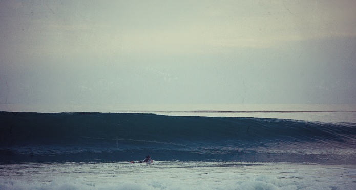 surfing tarantulas jalama santa barbara